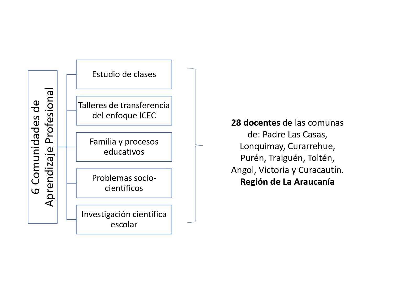ICEC-UFRO conforma seis nuevas Comunidades de Aprendizaje Profesional